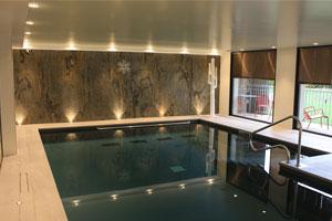 magnifique piscine avec feuille de pierre